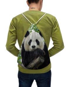 """Рюкзак-мешок с полной запечаткой """"Панда"""" - панда, фотография, животное"""