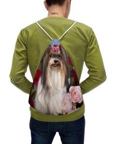 """Рюкзак с полной запечаткой """"Собака"""" - собака, фотография, животное"""