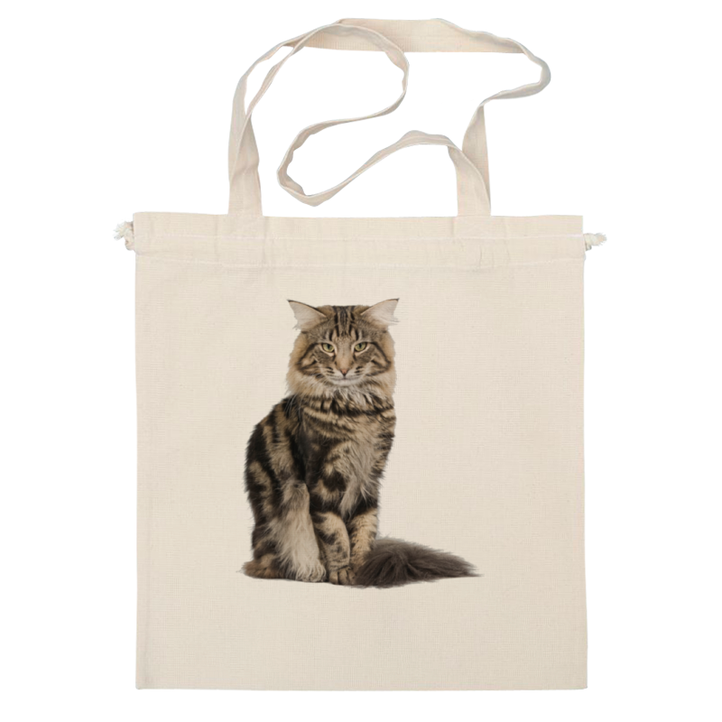 Сумка Printio Милый пушистый кот куплю кота мейн кун полукровки за 1000 рублей в москве