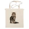 """Сумка """"Милый пушистый кот     """" - кот, кошка, котэ, алина макарова, мэйн кун"""