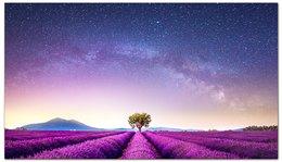 "Визитная карточка ""Без названия"" - космос, небо, природа, звёзды, лаванда"