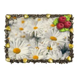 """Торт """"Ромашки"""" - цветы, цветок, белый, ромашка, желтый"""