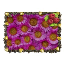 """Торт """"Астры"""" - астры, цветы, цветок, растение, природа"""