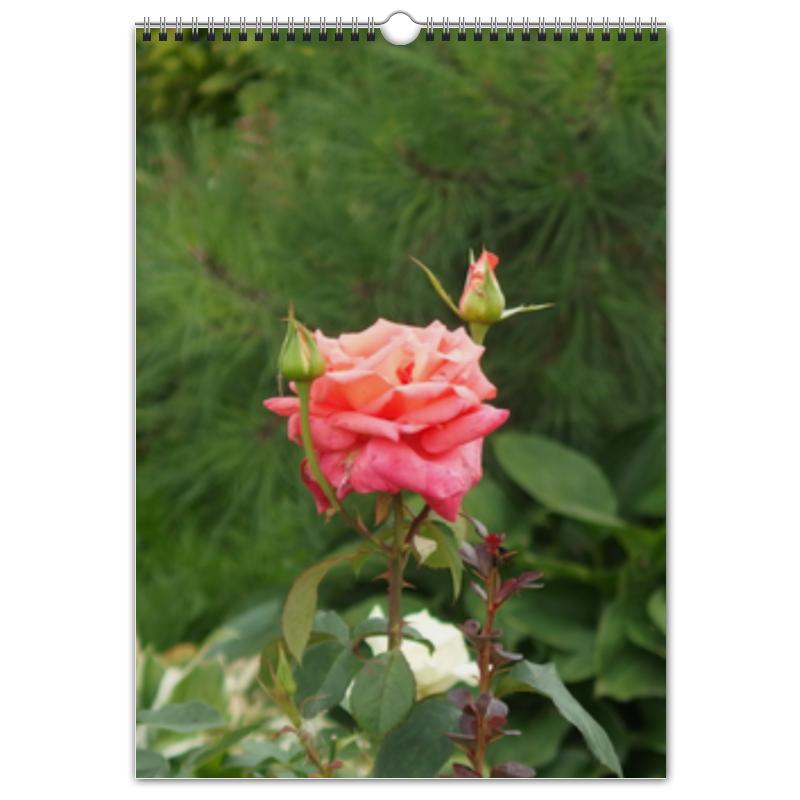 Перекидной Календарь А3 Printio Цветущая долина цены онлайн