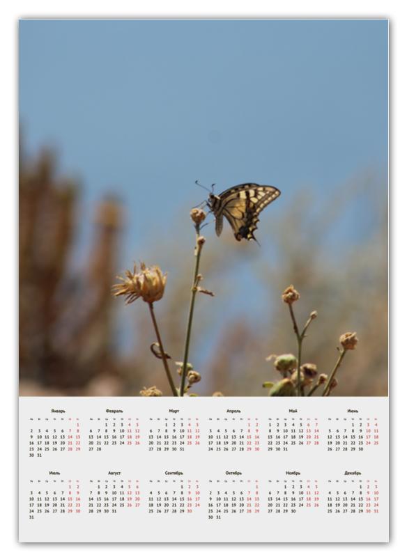Календарь А2 Printio Бабочка махаон махаон честное слово махаон