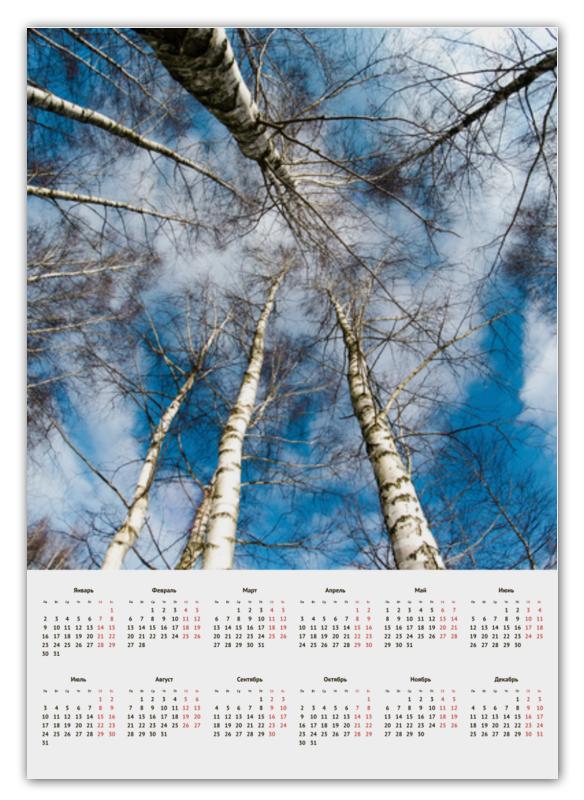 Календарь А2 Printio Березы gokelly голубое небо xxl