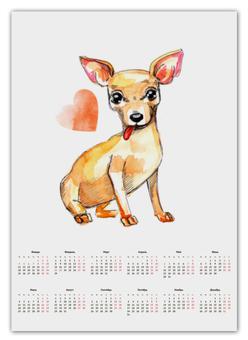"Календарь А2 ""Pam-pam-pam-pa-pa... Chihuahua!"" - сердце, собака, чихуахуа"