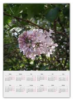 """Календарь А2 """"Сирень"""" - цветы, flower, природа, сирень, lilac"""