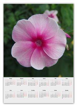 """Календарь А2 """"Цветущая долина"""" - лето, алтай, горный алтай, цветущая долина, долина цветов"""