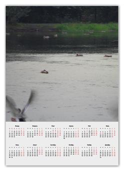 """Календарь А2 """"природа"""" - дизайн"""