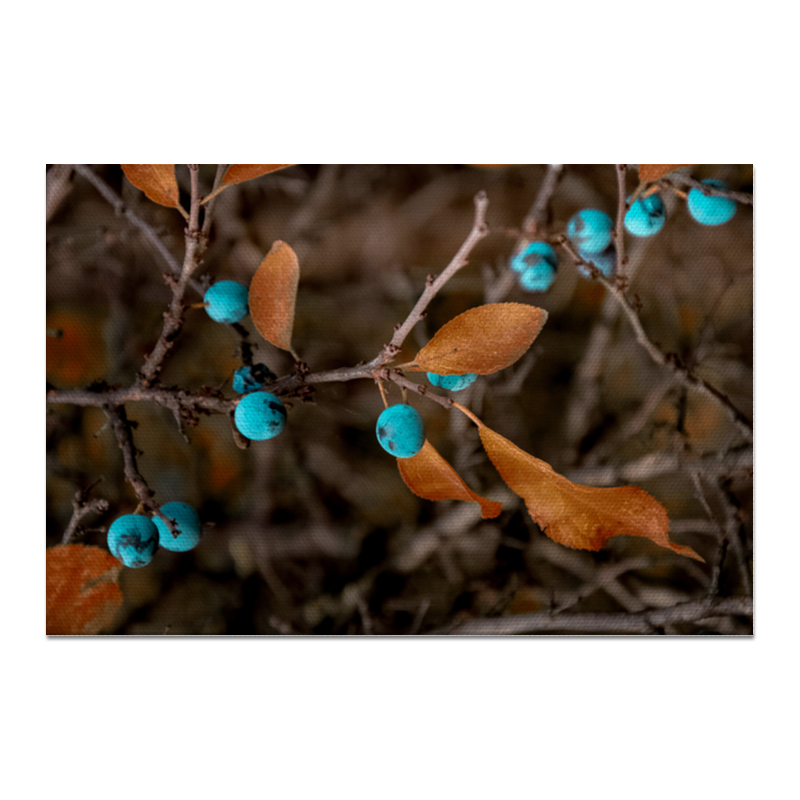 Холст 20х30 Printio Осенние листья