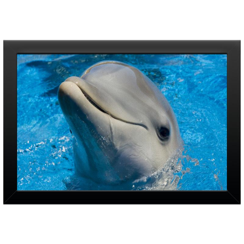 Холст 20х30 Printio Дельфин 1
