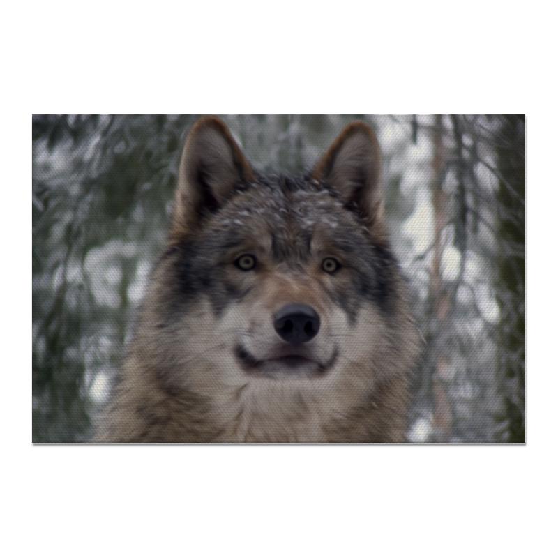 Холст 20х30 Printio Волк в лесу чехол для ноутбука 14 printio волк в лесу