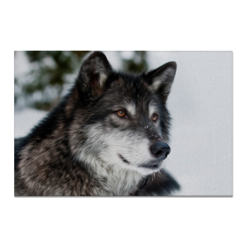 Холст 20х30 Printio Серый волк концентратор usb 2 0 d link dub h7 b d1a 7 x usb 2 0 черный