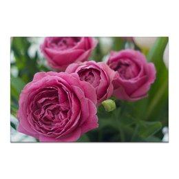 """Холст 20х30 """"Розовые розы"""" - праздник, любовь, цветы, розовый, розы"""
