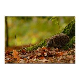 "Холст 20х30 ""Осень пришла"" - фото, осень, природа, ежик"