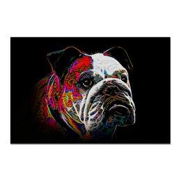 "Холст 20х30 ""Английский бульдог"" - живая природа, собака, english bulldog, английский бульдог, бульдог"