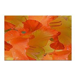 """Холст 20х30 """"Яркий день!"""" - лето, цветы, гладиолус, яркие краски, яркое настроение"""
