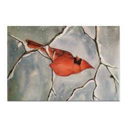 """Холст 20х30 """"Красный кардинал"""" - птица, снег"""