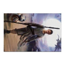 "Холст 20х30 ""Звездные войны - Рей"" - фантастика, звездные войны, дарт вейдер, кино, star wars"