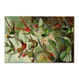 "Холст 20х30 ""Колибри (Trochilidae, Ernst Haeckel)"" - 8 марта, колибри, день матери, красота форм в природе, эрнст геккель"