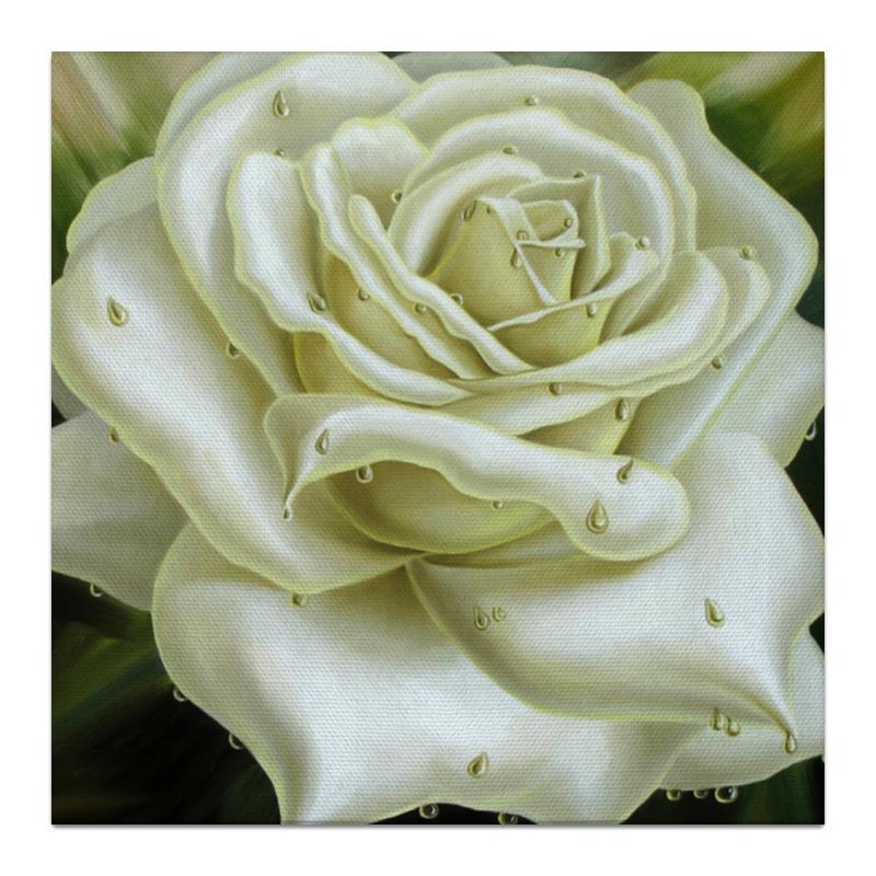 Холст 30x30 Printio Белая роза холст 30x30 printio botulinum toxin 3bta 30x30