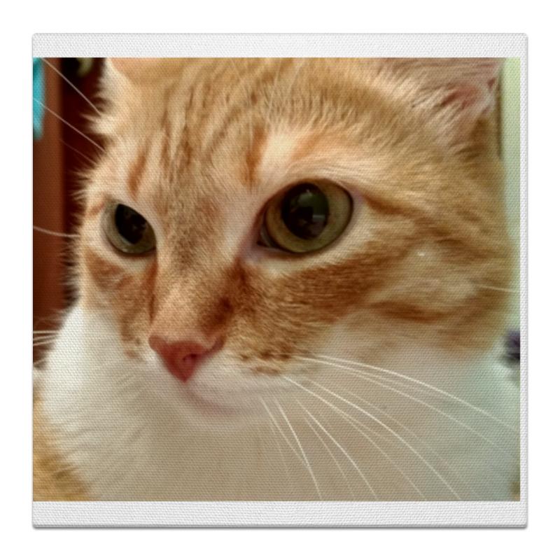 Холст 30x30 Printio Удивленный кот холст 30x30 printio фредди меркьюри