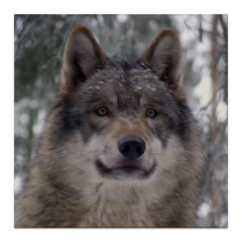Холст 30x30 Printio Волк в лесу чехол для ноутбука 14 printio волк в лесу