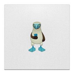"Холст 30x30 ""Blue-footed booby"" - iphone, птицы, смартфон, голубоногая олуша"