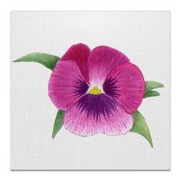 """Холст 30x30 """"Розовая Виола"""" - анютины глазки, розовые цветы, картина с цветами, виолы, акварельные цветы"""