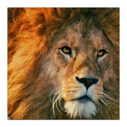 """Холст 30x30 """"Морда льва"""" - хищные кошки, лев, большие кошки, царь зверей, львы"""