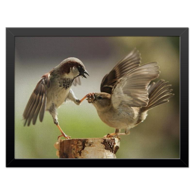 Холст 30x40 Printio Забавные птички
