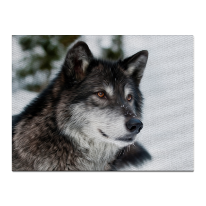 Холст 30x40 Printio Серый волк крыло переднее левое ford bb5z16006a для ford explorer 2010 2015