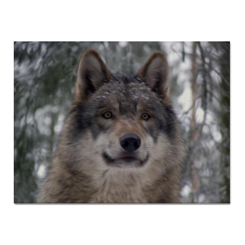 Холст 30x40 Printio Волк в лесу чехол для ноутбука 14 printio волк в лесу