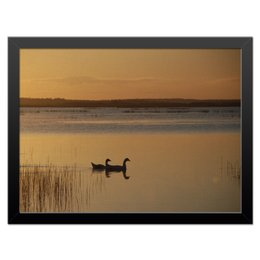 """Холст 30x40 """"Утро на озере"""" - &озеро, &восход, &интерьер"""