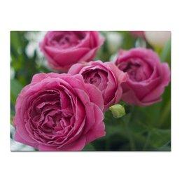 """Холст 30x40 """"Розовые розы"""" - праздник, любовь, цветы, розовый, розы"""
