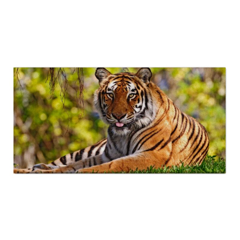 Холст 30x60 Printio тигр на поляне тигр лежащий t2021k o