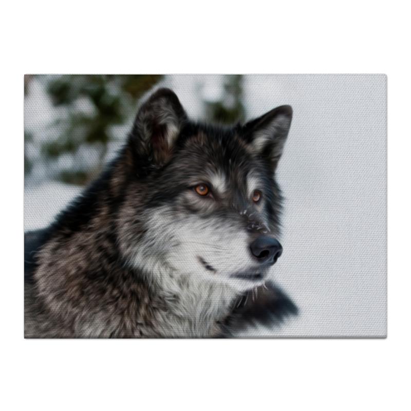Холст 40x55 Printio Серый волк ясон бадридзе волк проблемы связанные с реинтродукцией крупных хищных млекопитающих