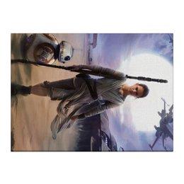 "Холст 40x55 ""Звездные войны - Рей"" - фантастика, звездные войны, дарт вейдер, кино, star wars"