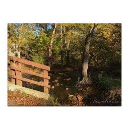 """Холст 40x55 """"Старый парк"""" - осень, fall, ручей, старыйпарк"""
