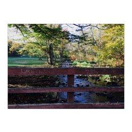 "Холст 40x55 ""Старый парк"" - осень, сша, fall, старыйпарк"