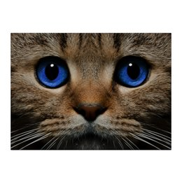 """Холст 40x55 """"Фото кота"""" - кот, котенок, мордочка, котэ, котик"""