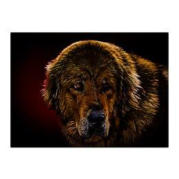 """Холст 40x55 """"Тибетский мастиф"""" - собаки, мастиф, mastiff, тибетский мастиф, мастино"""