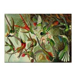 "Холст 40x55 ""Колибри (Trochilidae, Ernst Haeckel)"" - 8 марта, колибри, день матери, красота форм в природе, эрнст геккель"