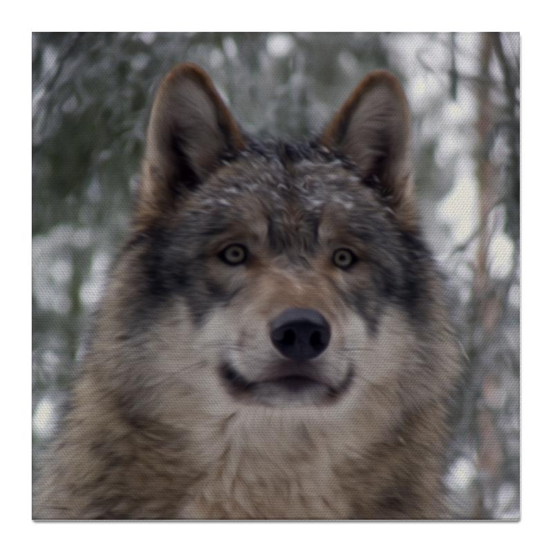 Холст 50x50 Printio Волк в лесу цена