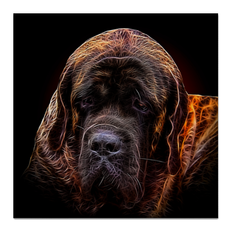 Холст 50x50 Printio Неаполитанский мастиф собаки от а до я испанский мастиф