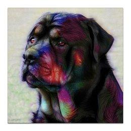 """Холст 50x50 """"Ротвейлер"""" - природа, собаки, rottweiler, ротвейлер"""