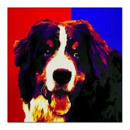 "Холст 50x50 ""Бернская пастушья собака"" - собаки, овчарка, бернская пастушья собака, бернский зенненхунд"