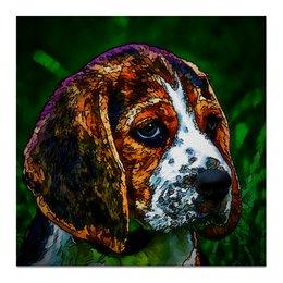 "Холст 50x50 ""Бигль"" - животные, собаки, бигль, beagle"