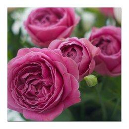 """Холст 50x50 """"Розовые розы"""" - праздник, любовь, цветы, розовый, розы"""